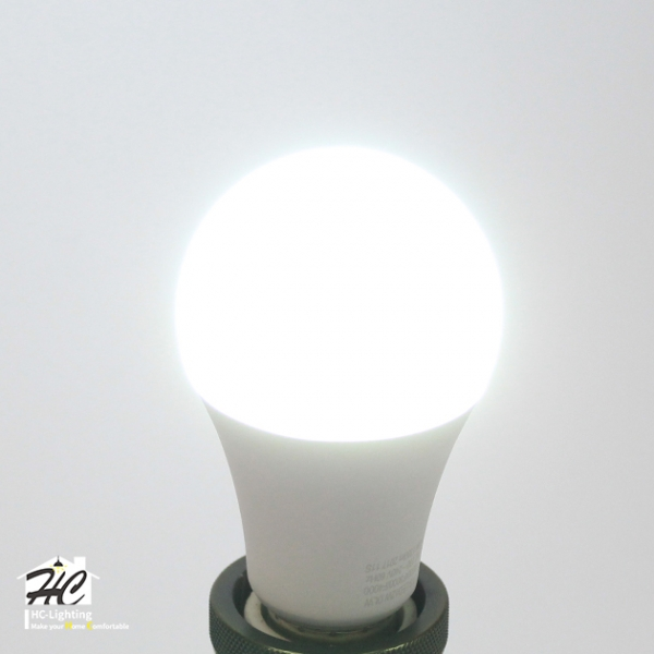 13W LED E27 燈泡 1